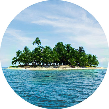 image of a tropical island with palm trees